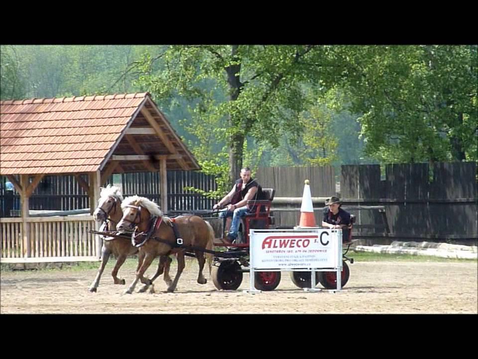 Vozatajské závody ranč Ladná