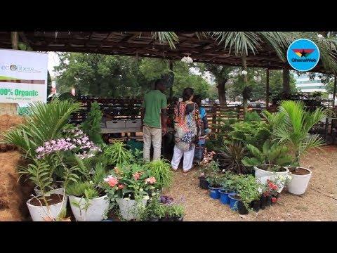 All Set For Ghana Garden And Flower Fair 2017 Youtube