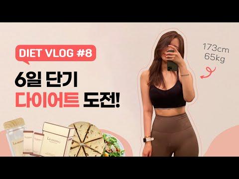 Eng) 6일 단기 다이어트 챌린지🔥 173cm 65kg - 63kgㅣ빵순이 먹방 유튜버의 바디프로필 준비 브이로그#8 what i eat in a week [diet vlog]