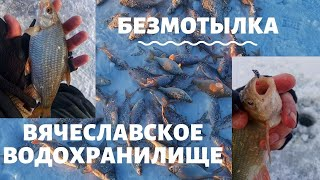 БЕЗМОТЫЛКА Вячеславское Водохранилище Сезон 2019 2020