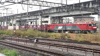 JR貨物 EH500-33 貨物列車 3083レ 黒磯駅 停車