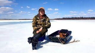Майский выход на рыбалку по последнему льду. Природа Якутии.