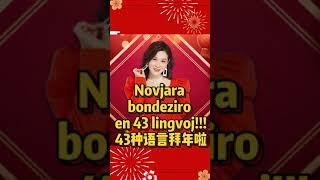 Novjara bondeziro en 43 lingvoj! Happy new year in 43 languages!43种语言给您拜年啦!