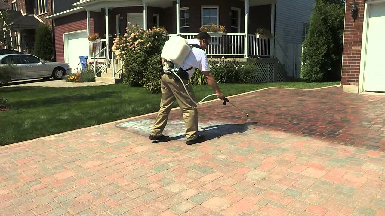 Techniseal: How To Apply A Water Based Wet Look Paver Sealer   YouTube
