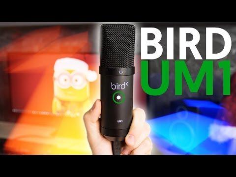 Le Meilleur Micro USB à moins de 60€ ?! - Bird UM1