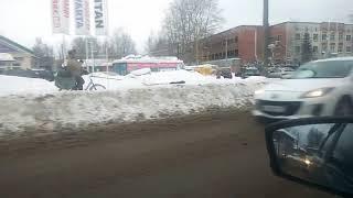 Сыктывкарец запряг собак в велосипедную упряжку и рассекает по городу