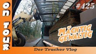 Mächtig gewaltig |Vlog #425