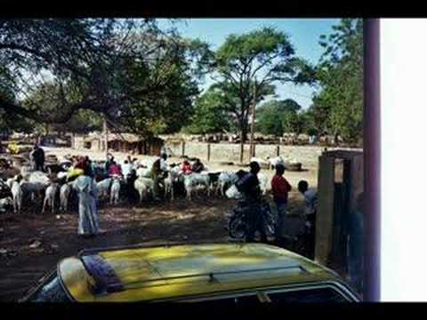 Images of The Gambia