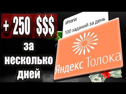 Яндекс Толока - Сколько можно заработать в день в 2021 году / Заработок Без Вложений на Телефоне