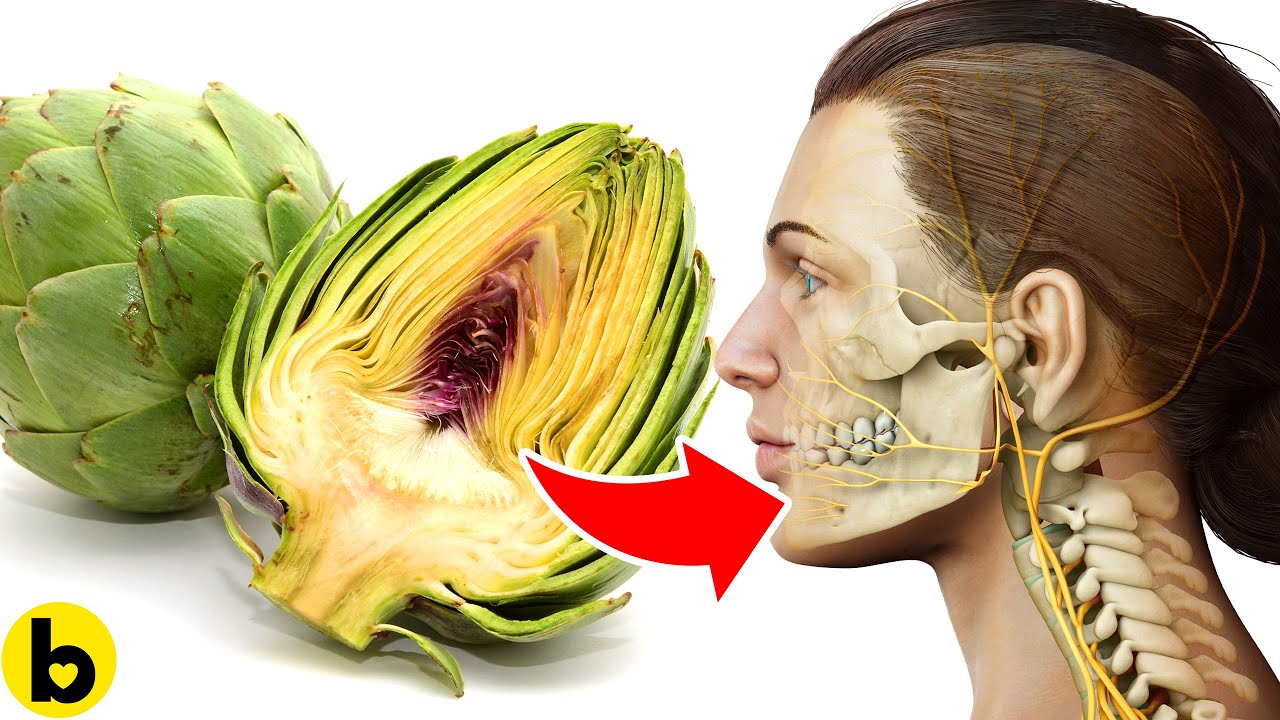 What happens to your Body when you Start Eating Artichokes