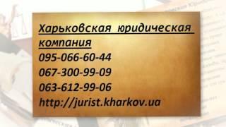 видео Юридические услуги