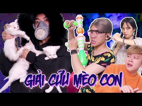 Cô Giúp Việc Điệp Viên - Giải Cứu Đàn Mèo Con!!