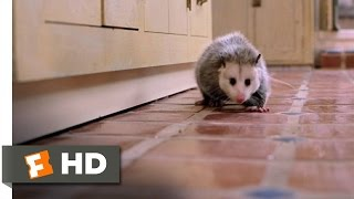 Clockstoppers (1/9) Movie CLIP - Possum Trouble (2002) HD