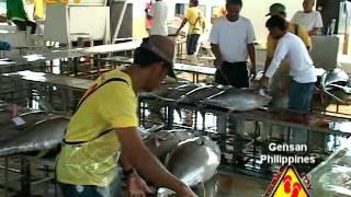 Make My Trip Travel TV - Gensan International Fish Port Complex, Philippines
