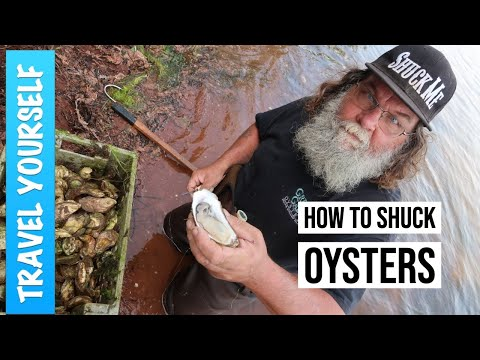 How To Shuck Oysters - Malpeque Oysters From Prince Edward Island
