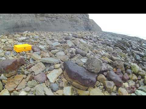 Fossil Hunting Episode 35, Pt1  Dinosaur Footprints
