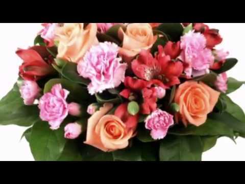 Toate florile din lume ! - Anisoara Puica -