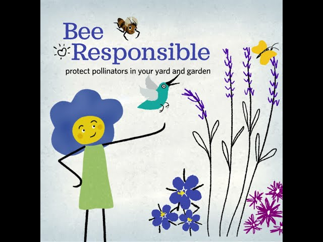 Pollinator Stewardship at Home
