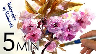 [Eng sub]  Double cherry blossom flowers / Sakura / 5 min Easy Watercolor / Tutorial for beginners