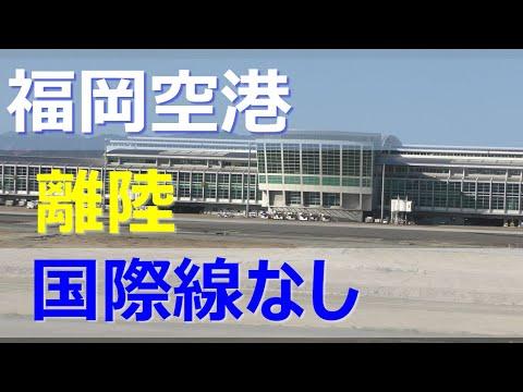 福岡 空港 フライト 情報 欠航