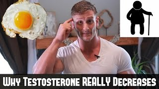 Why Does Testosterone Decrease | The Truth About How to Boost Testosterone- Thomas DeLauer