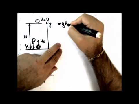 Как найти начальную скорость тела брошенного вертикально вверх