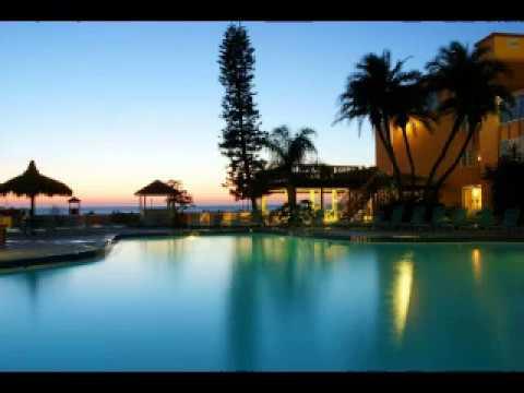 Dolphin Beach Resort St Pete