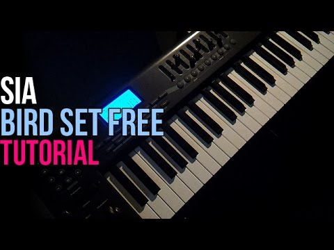 How To Play: Sia - Bird Set Free (Piano Tutorial)