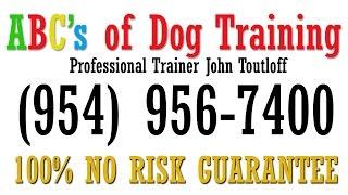 Davie Dog Trainer | Dog Obedience Training Davie Fl