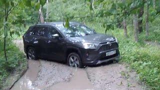 Взял Toyota Rav4 со старым полным приводом - застрял один в лесу! Что делать?