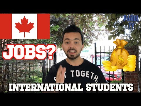 VLOG 1: How to find Jobs in Canada (in Punjabi) | for International students and new immigrants