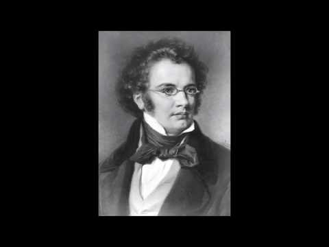 Schubert - Symphony No. 8 (Unfinished): I. Allegro moderato [HD]