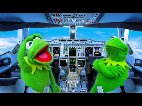 Kermit the Frog Flies an Airplane to New York City!