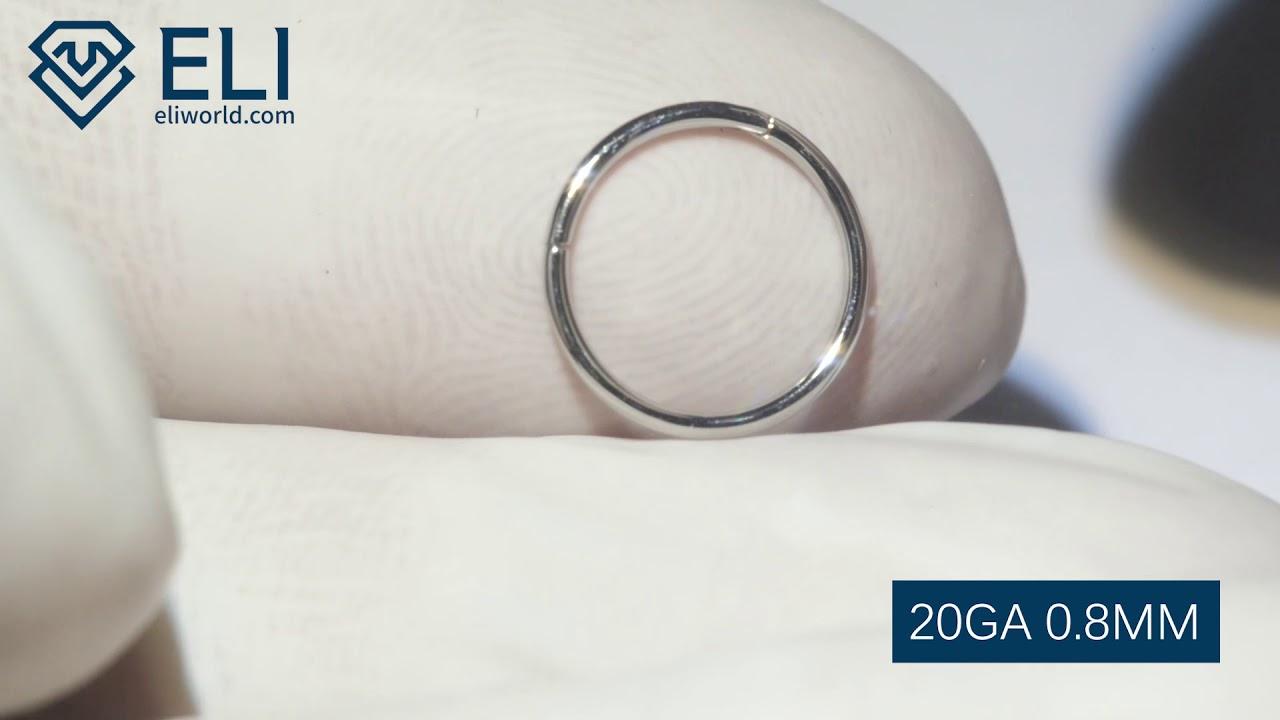 High Quality Basic Hinged Hoop Segment Nose Ring Septum Clicker