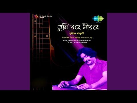 Ga Gare Pakhi Ga Instrumental Electric Guitar