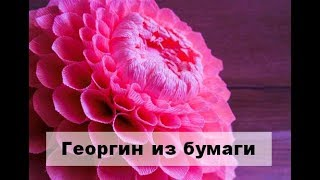 dIY Большой георгин из гофрированной бумаги. Цветы из бумаги