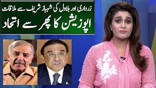 Asif Zardari & Shahbaz Sharif Meeting..Big Planning Aginst PTI Govt?   Seedhi Baat