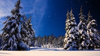 "Christmas music, Christmas instrumental Music,  ""Let It Snow"" by Tim Janis"