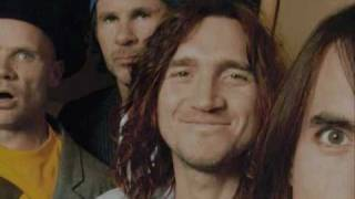 Watch Red Hot Chili Peppers Funny Face video