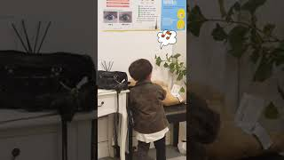 이케아 강아지인형 선물받은 잘생긴 5살 조카 반응