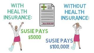 Health Insurance 101 The Basics (Health Insurance 13)