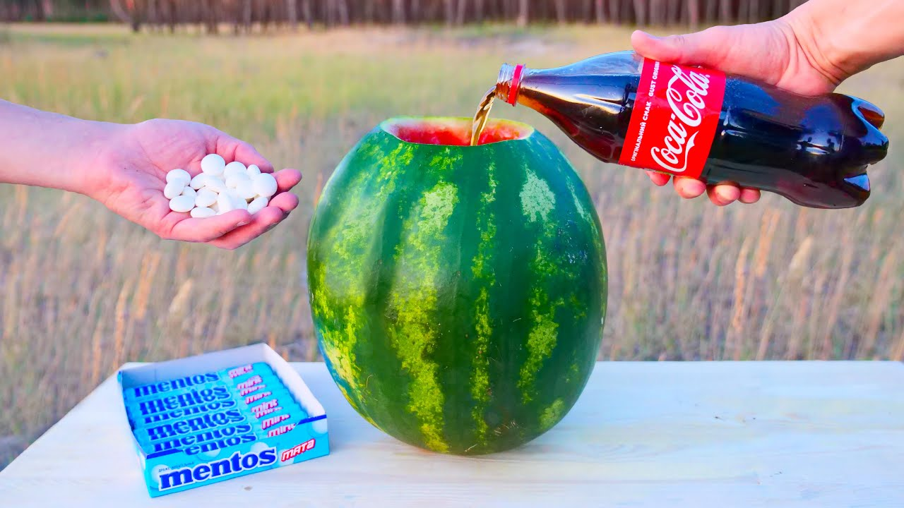 Experiment: Coca-Cola and Mentos VS Watermelon