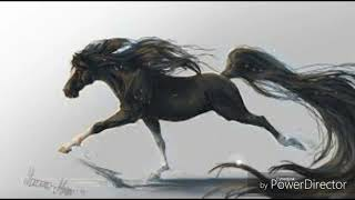 Мои картинки аниме лошадей