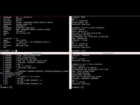Testing Varnish Logs and Statistics in Web Servers