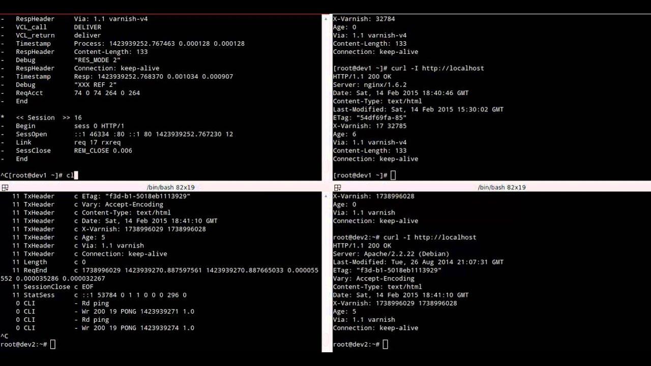 Vary Accept Encoding Nginx