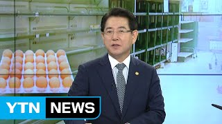 '살충제 달걀' 추가 검사 시작...축산업 개선 대책은? / YTN thumbnail