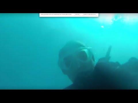 Plongée tenerife Los Cristianos 2015 - 12m - PADI Aqua Marina Dive Center