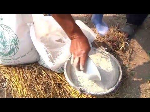 กรมพัฒนาที่ดิน - ลดต้นทุน เพิ่มผลผลิต เกษตรปลอดภัย เริ่มที่ดินดี 040459