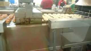 Krispy Kreme Donuts Doughnuts Being Made Fresh Hot Now