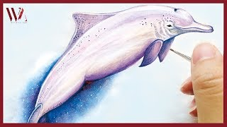 How to Paint a Dolphin- Watercolor Painting Ideas for Beginners- Windy Shih